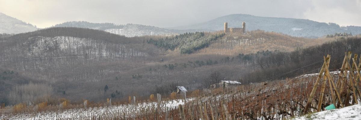 Le massif des Vosges a tant de secrets à vous dévoiler